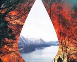 """Clean Bandit regresa con """"Tears"""", su nueva canción."""
